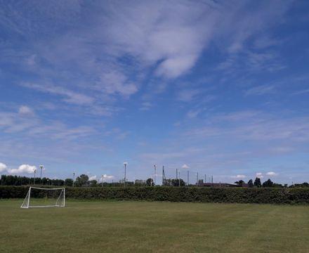 Fields to Chelsea (2)