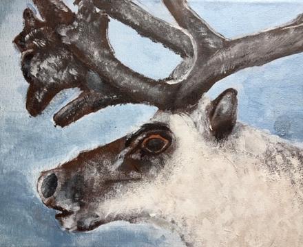 Reindeer alex j year5