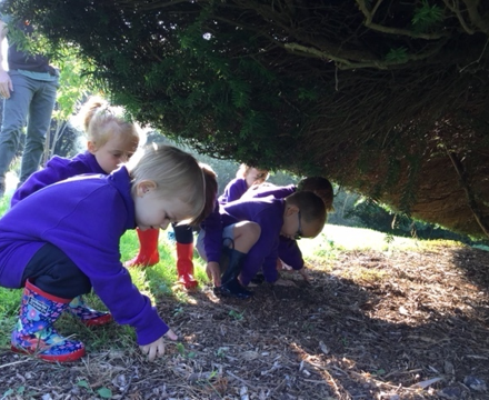 Owls forest school3